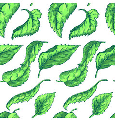 apple tree sketch pattern 1 vector image