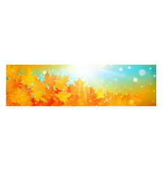 autumn banner with colorful leaves on gold bokeh vector image