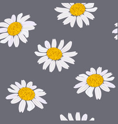 daisy flowers heads seamless pattern vector image
