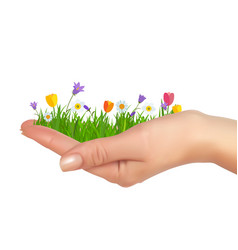 grass and flowers in hand spring is cooming vector image
