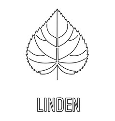 linden leaf icon outline style vector image