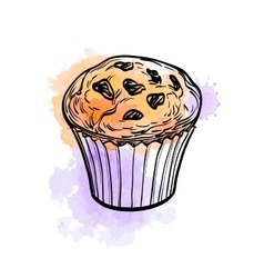 Muffin with raisins vector