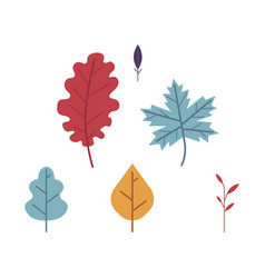 thanksgiving autumn harvets leaves set vector image