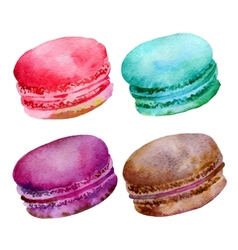 Macaroons vector image vector image