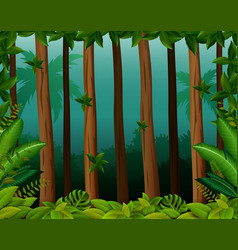 background scene with trees in forest vector image