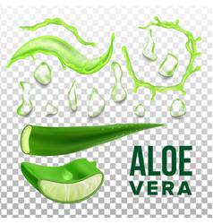 Elements of eco healthcare aloe vera set vector
