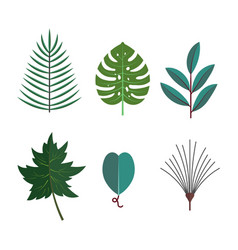 Green tropical leaves floral icons set autumn vector