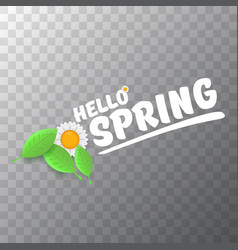 Hello spring cut paper banner with text and vector