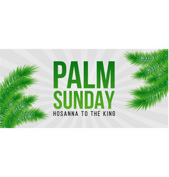 Palm sunday holiday card poster with palm leaves vector
