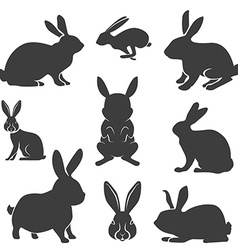 set rabbits in different poses easter vector image