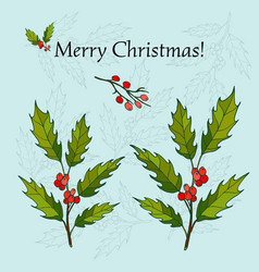 holly christmas background vector image