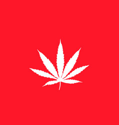 white cannabis leaf on red background flag flat vector image