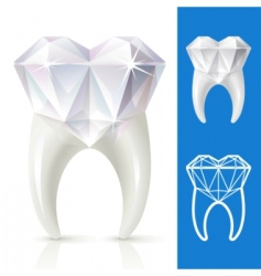 teeth strong as diamond vector image