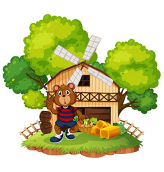 a bear at farm vector image