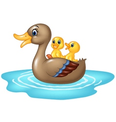 Cartoon ducks on the pond isolated vector image