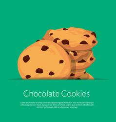 chocolate cookies vector image