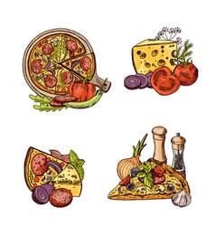 colored hand drawn italian pizza vector image