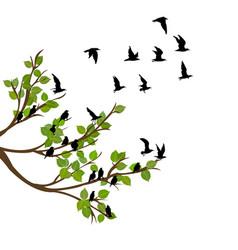 Flock flying birds on tree branch vector