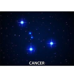 Set of Symbol Zodiac Cancer vector image
