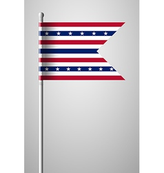 Stars and Stripes Flag vector