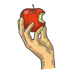 Bitten apple in hand color sketch engraving vector