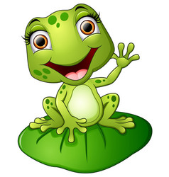 Cartoon frog sitting on the leaf vector