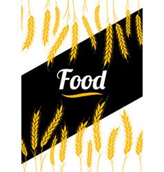 design cover gold wheat ears organic wheat bread vector image