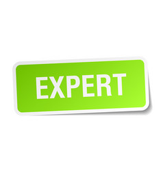 Expert square sticker on white vector