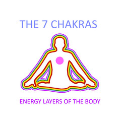 Graphic showing the seven chakras vector