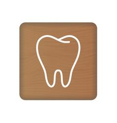 human tooth icon an internal organ human vector image
