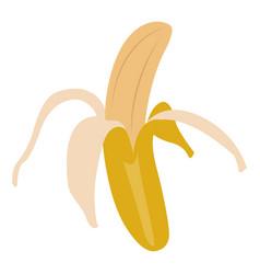 Isolated peeled banana vector