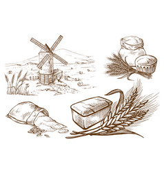 set of fresh bread and ear sack mill vector image
