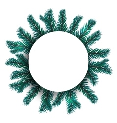 Blue realistic fir branches spruce branch in a vector