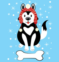 christmas of a dog in a hat and with vector image vector image