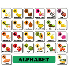 alphabet english fruit and vegetable berry vector image