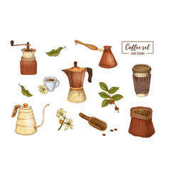Collection elegant drawings tools for coffee vector