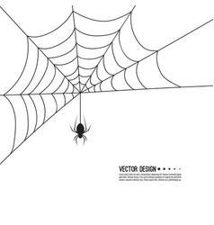 creepy spider web vector image