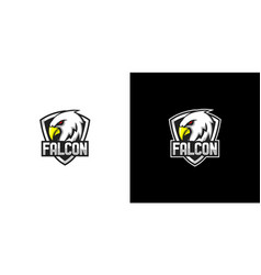 falcon shield logo design vector image