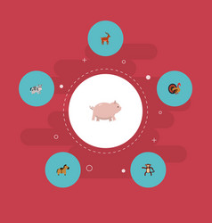 Flat icons swine kine chimpanzee and other vector