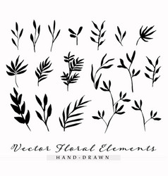 Floral elements hand-drawn vector