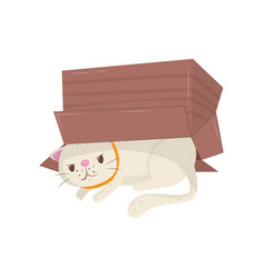 Funny cat hiding under cardboard box kitten with vector