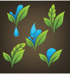 plant and water vector image