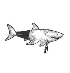 shark businessman sketch vector image