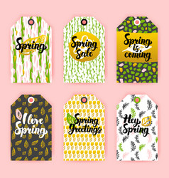 hello spring gift labels vector image vector image