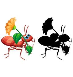 Ant holding flower set vector