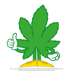 cartoon marijuana vector image