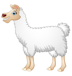 Cute alpaca cartoon vector