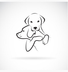 dogs hug each other on white background pet vector image