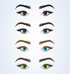 female eye and eyebrow sexy eyes simple modern vector image