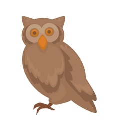 Owl character isolated on white vector